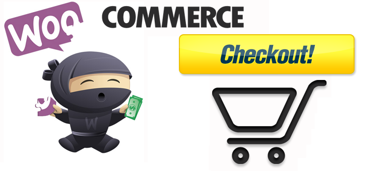How to Configure the Checkout Options